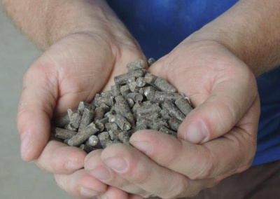 Chicken manure pellets 05-tradeinfact
