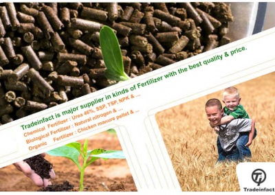 Organic fertilizer-01-www.tradeinfact