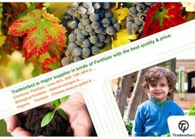 Organic fertilizer-02-www.tradeinfact
