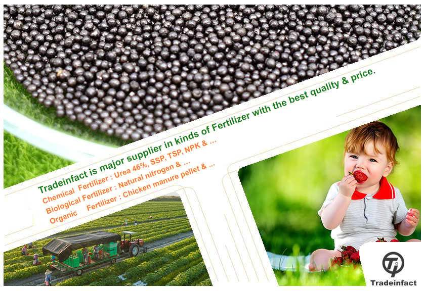 tradeinfact group-Organic Fertilizer-Chemical Fertilizer-BioFertilizer